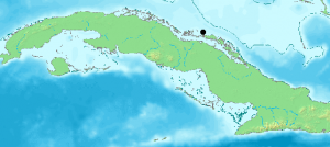 Cayo Guillermo Location on Map