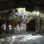 La Cueva Del Jabali Cayo Coco Disco tour